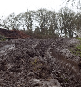 muddy-field-7
